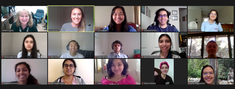 Engineering ambassadors in a Zoom meeting